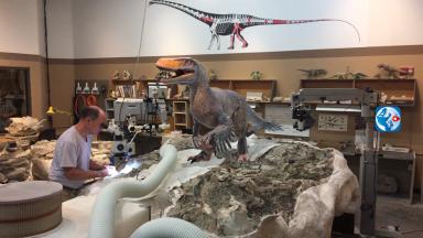 Scott working on Utahraptor 1
